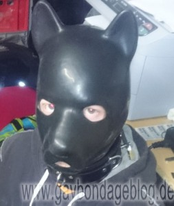 Latex-Hundemaske