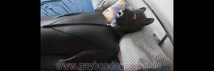 Bondagesack mit Hundemaske